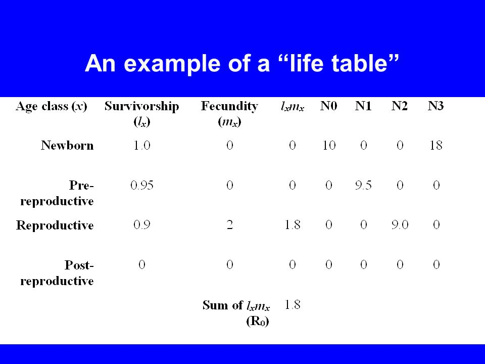 An example of a life table