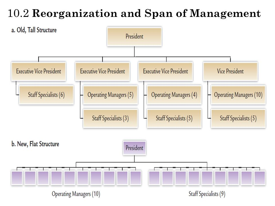 10.2 Reorganization and Span of Management