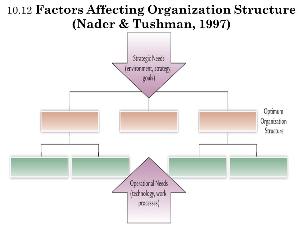 10.12 Factors Affecting Organization Structure (Nader & Tushman, 1997)