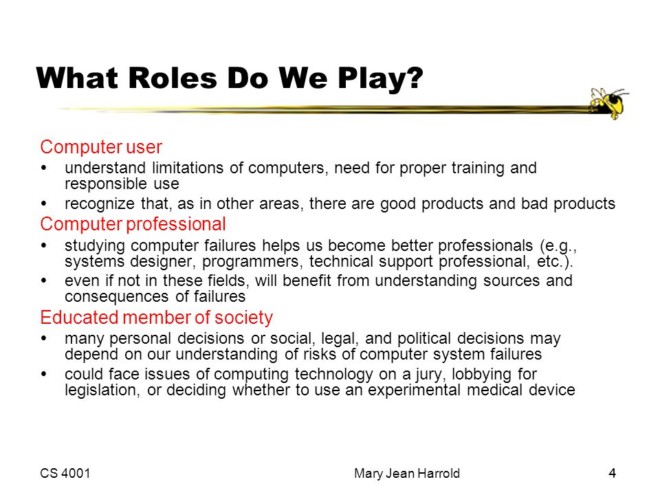 What Roles Do We Play Computer user Computer professional