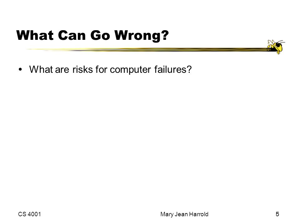 What Can Go Wrong What are risks for computer failures