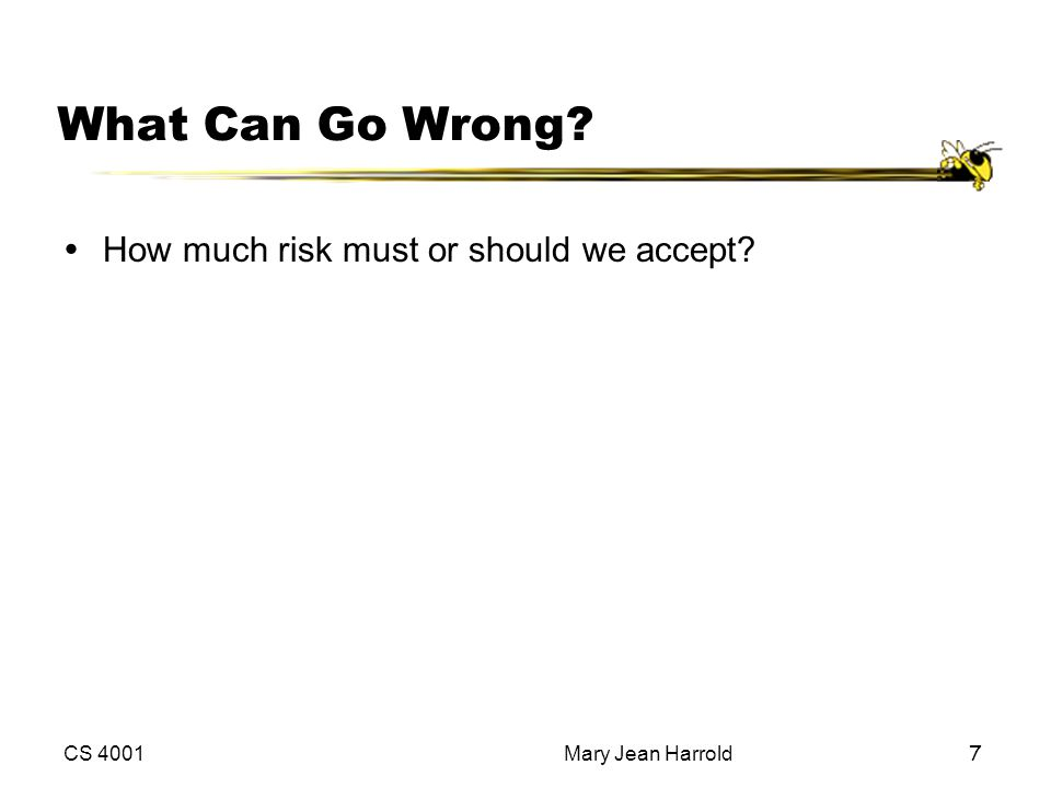 What Can Go Wrong How much risk must or should we accept