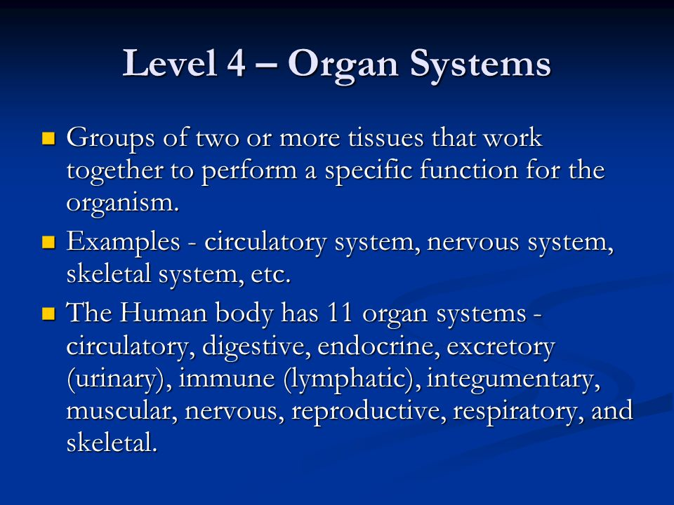 Level 4 – Organ Systems Groups of two or more tissues that work together to perform a specific function for the organism.