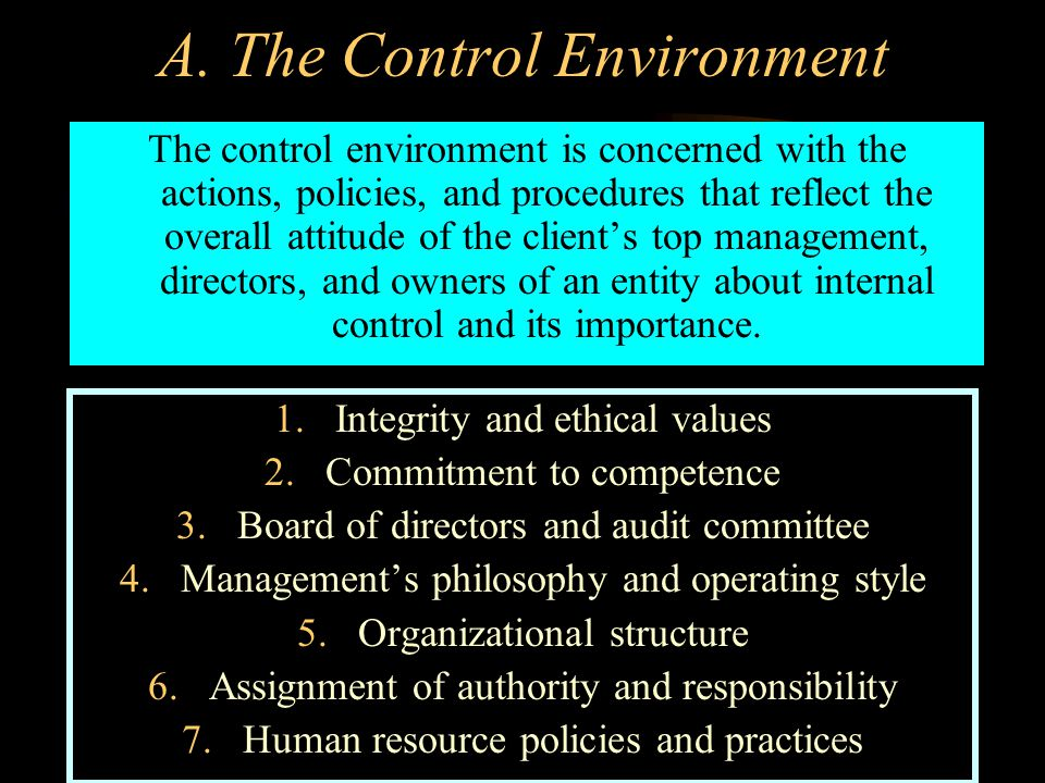 A. The Control Environment