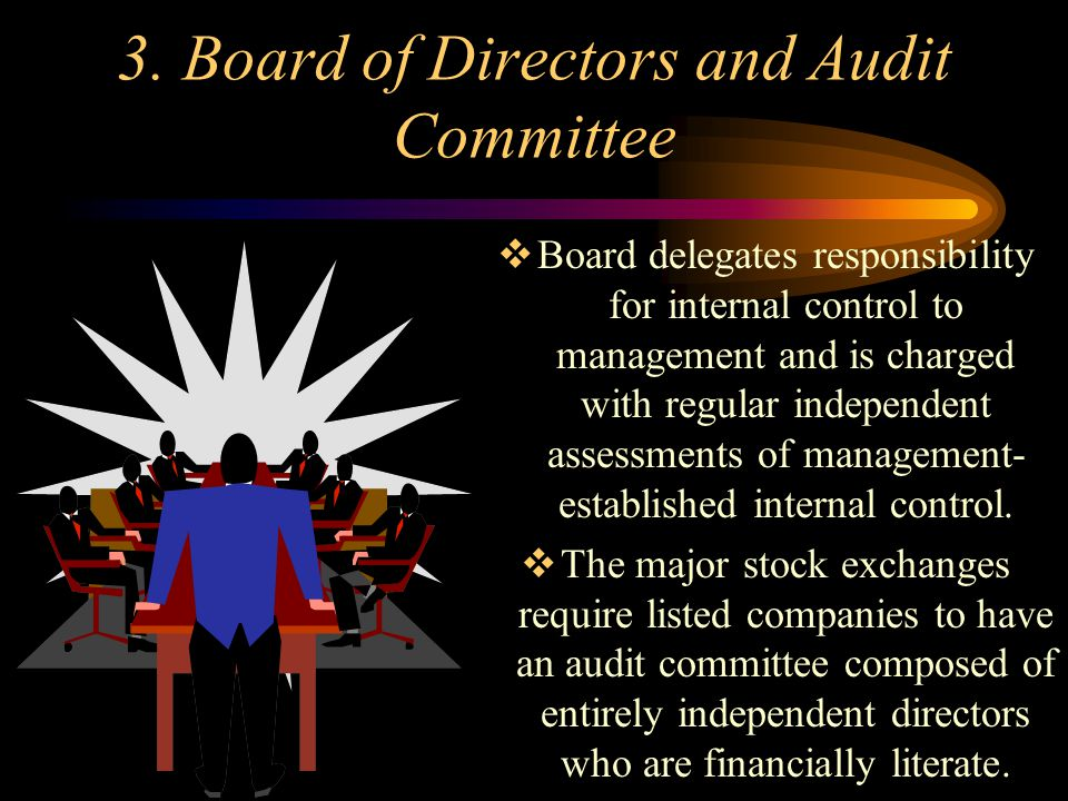 3. Board of Directors and Audit Committee