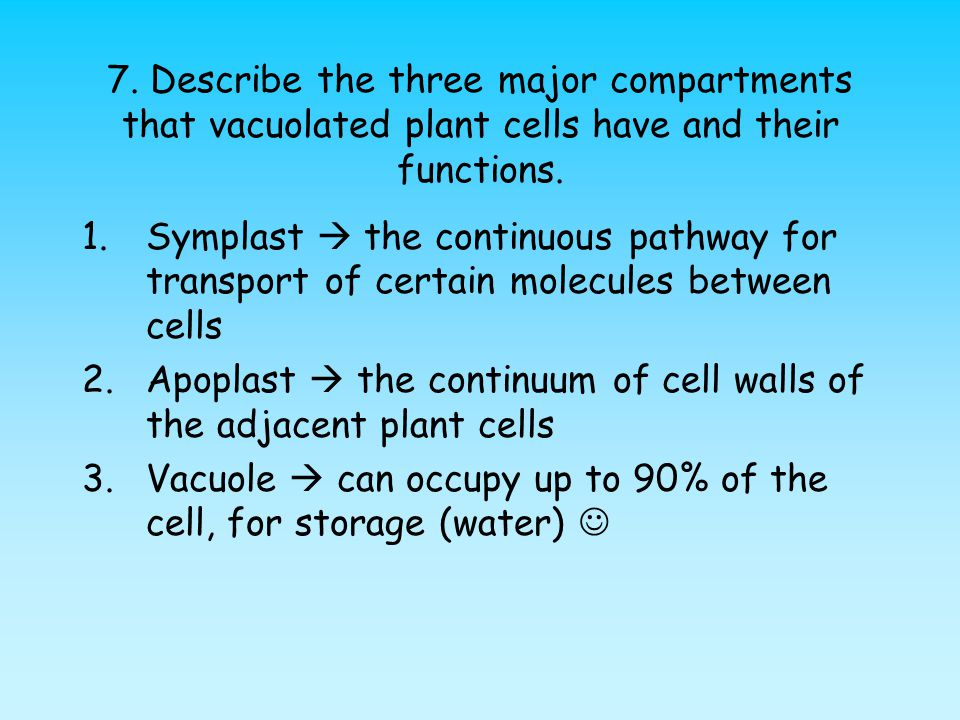 7. Describe the three major compartments that vacuolated plant cells have and their functions.