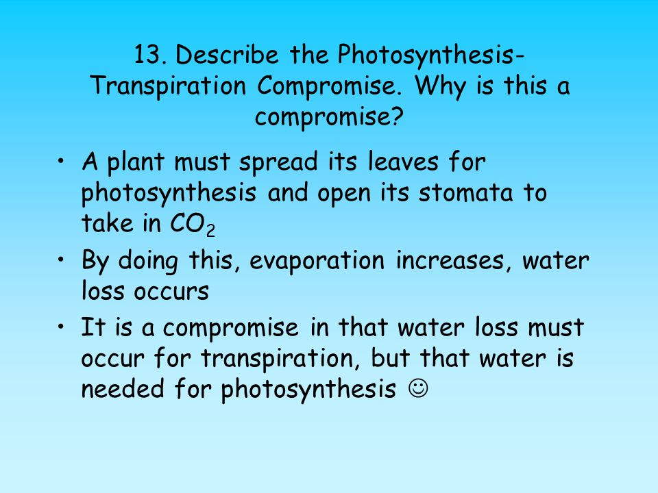 13. Describe the Photosynthesis-Transpiration Compromise
