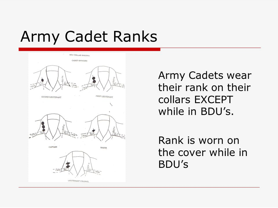 Army Cadet Ranks Army Cadets wear their rank on their collars EXCEPT while in BDU's.