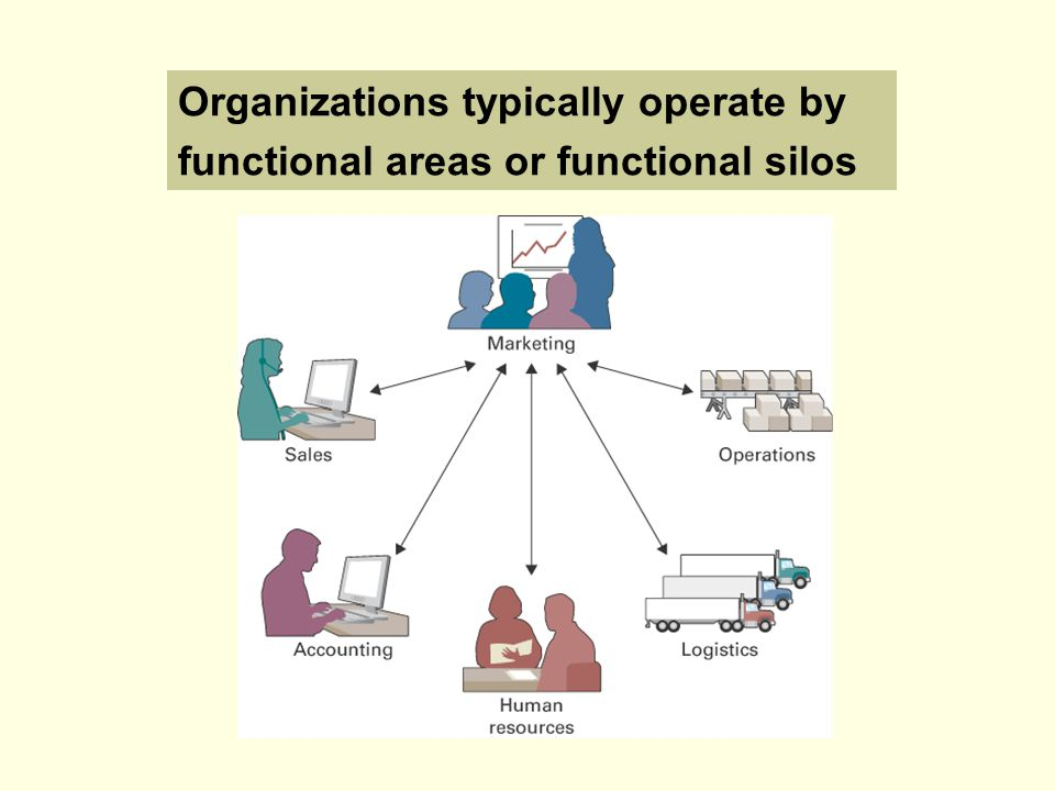 Organizations typically operate by