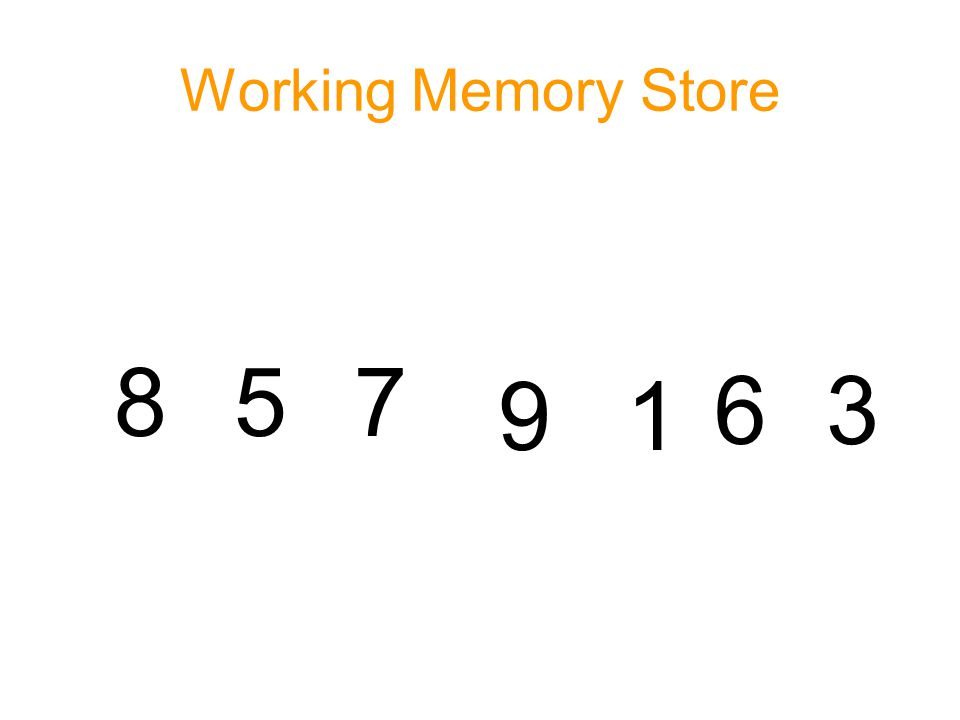 Working Memory Store 8 5 7 9 1 6 3