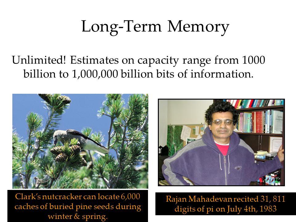 Rajan Mahadevan recited 31, 811 digits of pi on July 4th, 1983