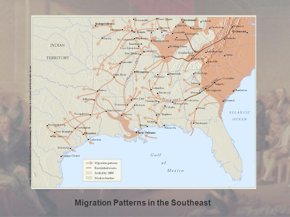Migration Patterns in the Southeast