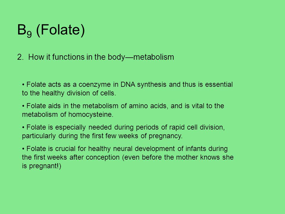 B9 (Folate) 2. How it functions in the body—metabolism