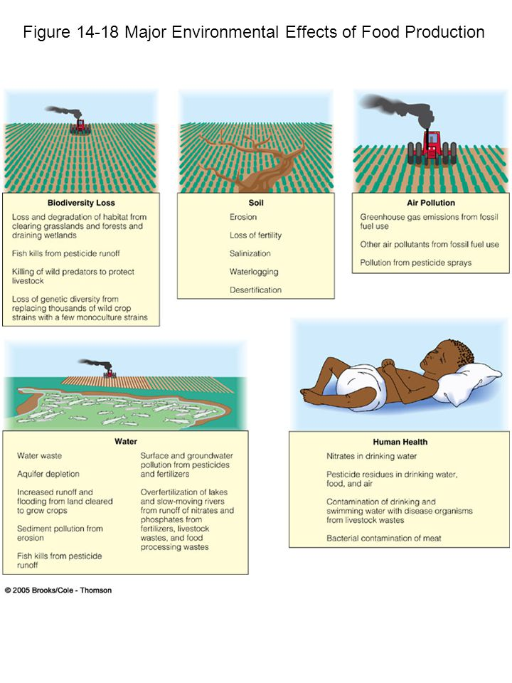 Figure 14-18 Major Environmental Effects of Food Production