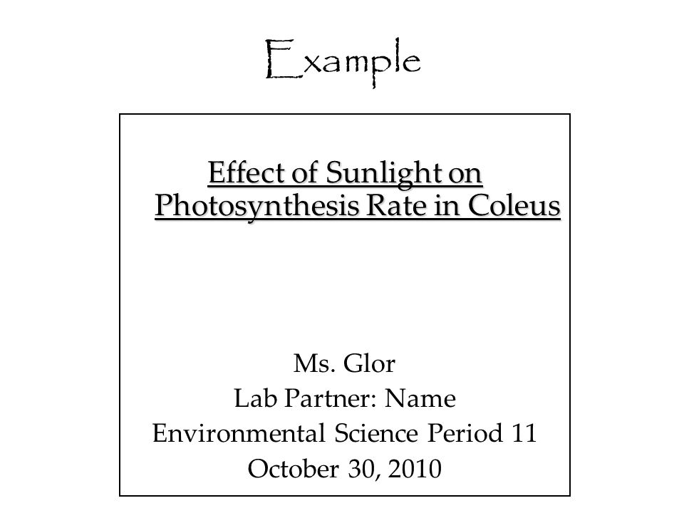 Example Effect of Sunlight on Photosynthesis Rate in Coleus Ms. Glor