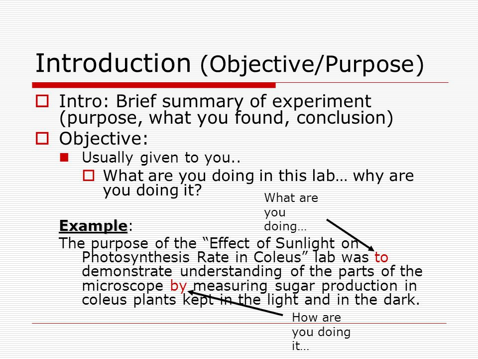 Introduction (Objective/Purpose)