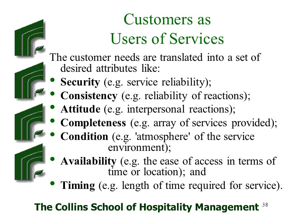 Customers as Users of Services