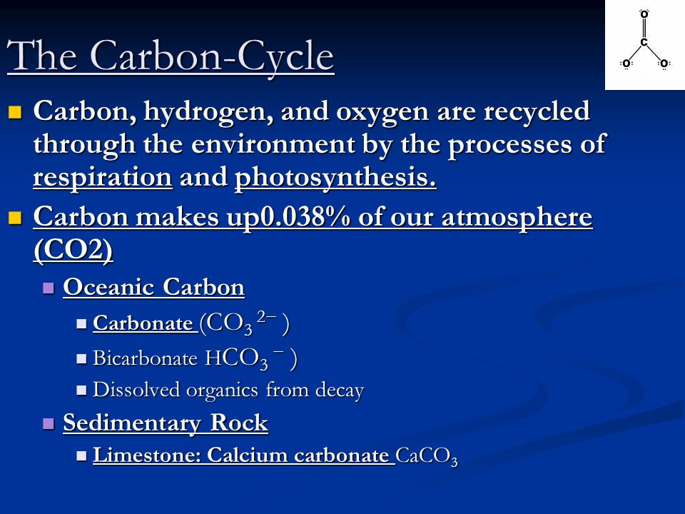 The Carbon-Cycle Carbon, hydrogen, and oxygen are recycled through the environment by the processes of respiration and photosynthesis.