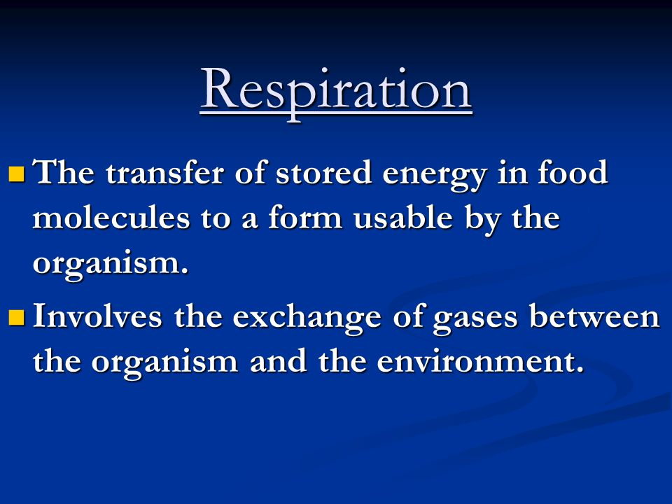 Respiration The transfer of stored energy in food molecules to a form usable by the organism.