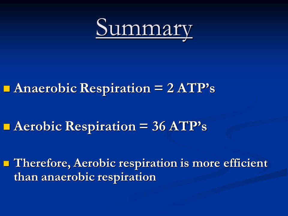 Summary Anaerobic Respiration = 2 ATP's Aerobic Respiration = 36 ATP's