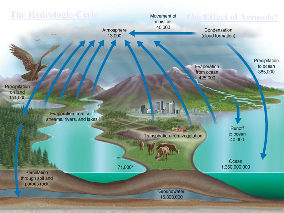 The Hydrologic-Cycle The Effect of Aerosols