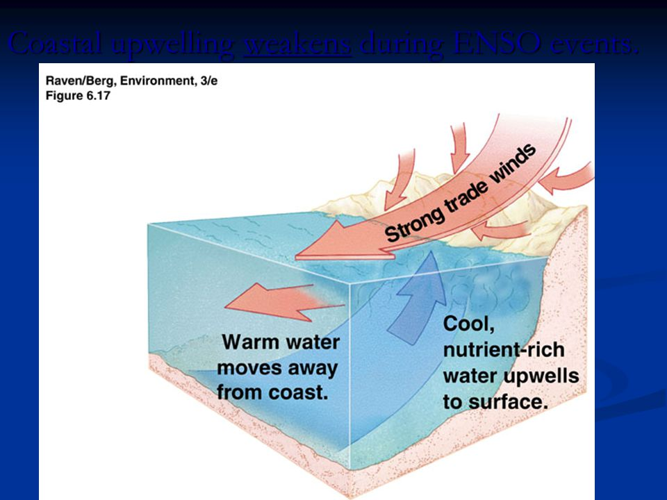 Coastal upwelling weakens during ENSO events.