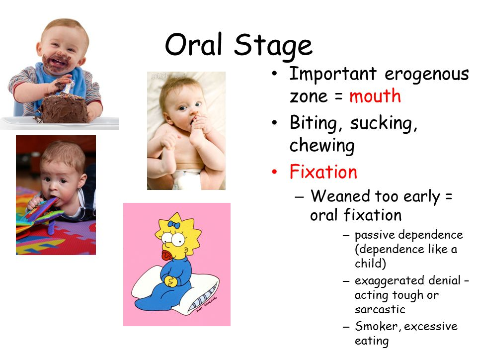Oral Stage Important erogenous zone = mouth Biting, sucking, chewing