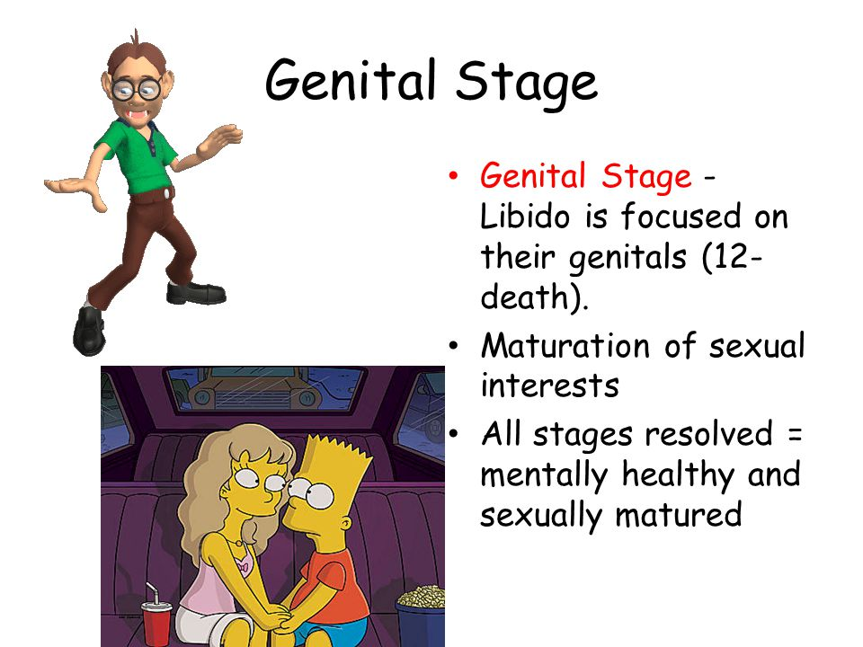 Genital Stage Genital Stage - Libido is focused on their genitals (12-death). Maturation of sexual interests.