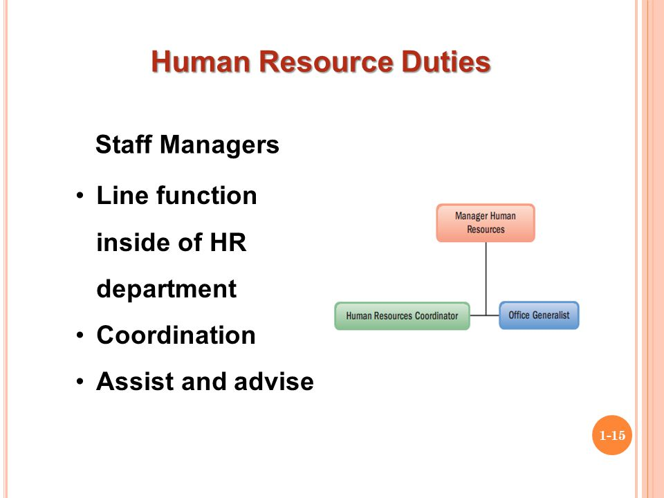 Human Resource Management. Roles of Line-Managers and Stages of HR Planning