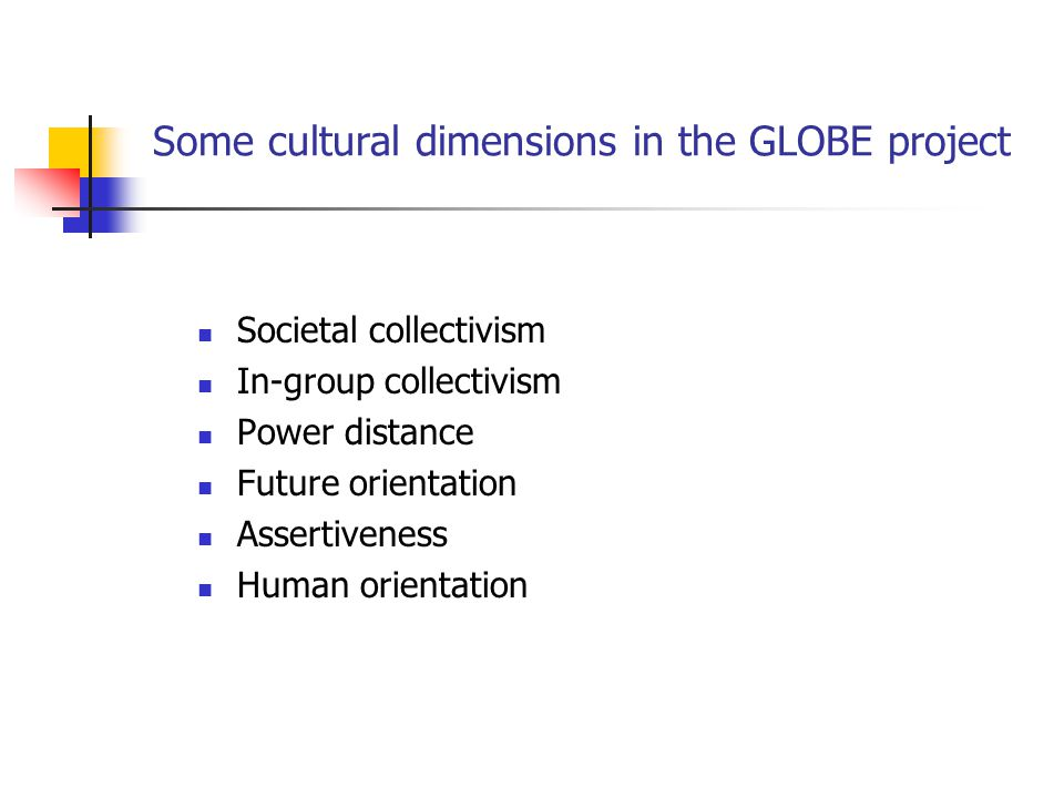 Some cultural dimensions in the GLOBE project