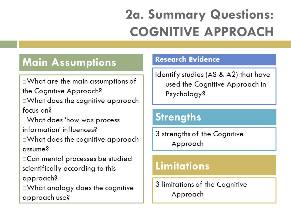 2a. Summary Questions: Cognitive approach