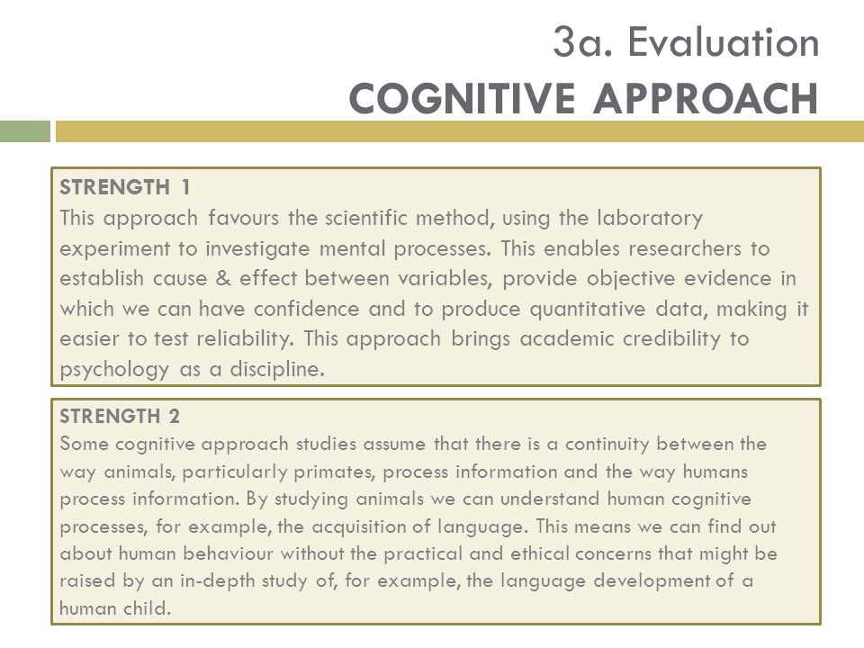 What is Cognitive Assessment?