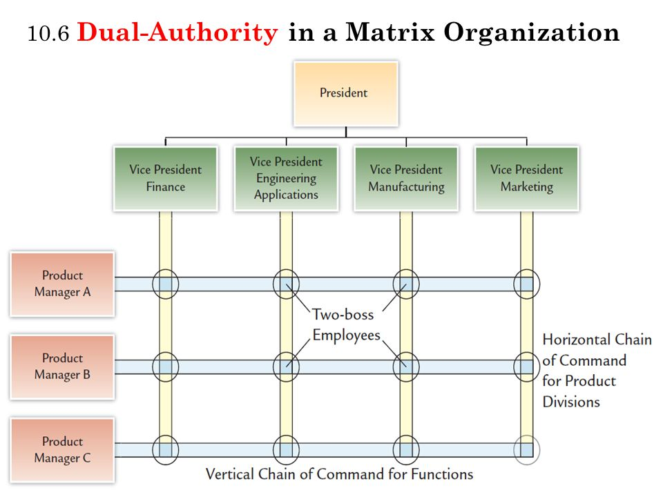 10.6 Dual-Authority in a Matrix Organization