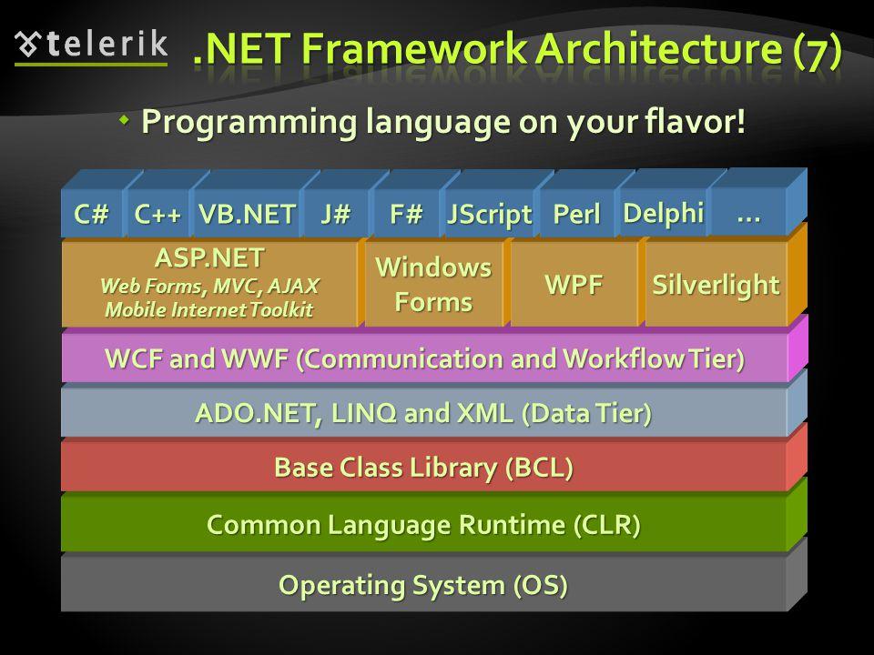 .NET Framework Architecture (7)