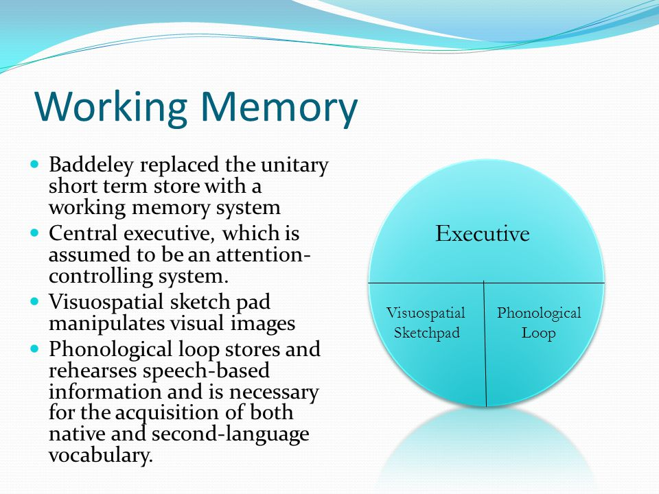 Working Memory Executive