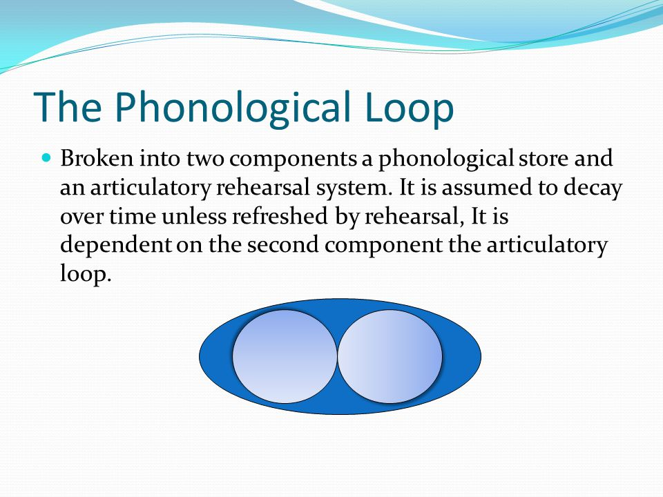 The Phonological Loop