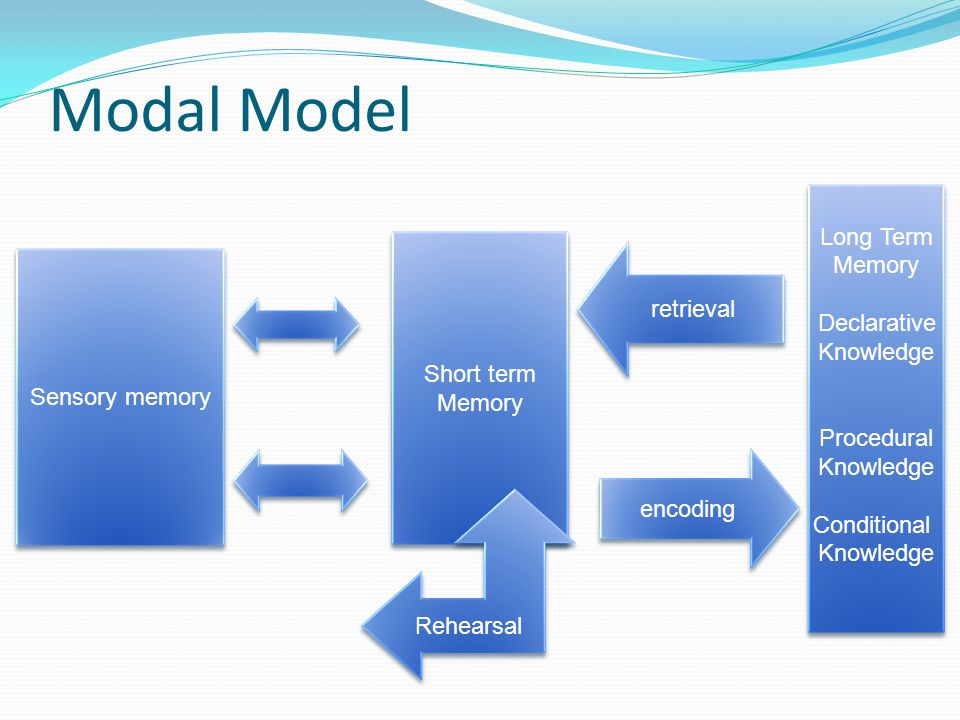 Modal Model Long Term Memory Declarative Knowledge retrieval