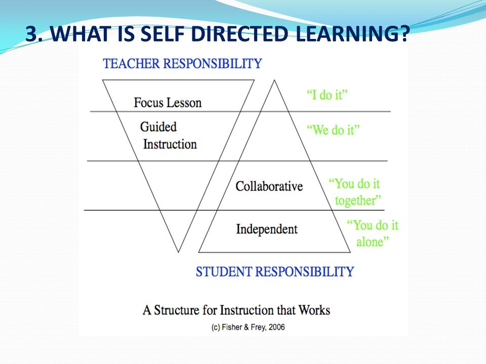 3. WHAT IS SELF DIRECTED LEARNING