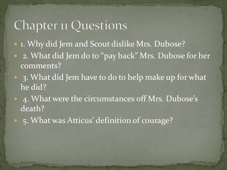 Chapter 11 Questions 1. Why did Jem and Scout dislike Mrs. Dubose