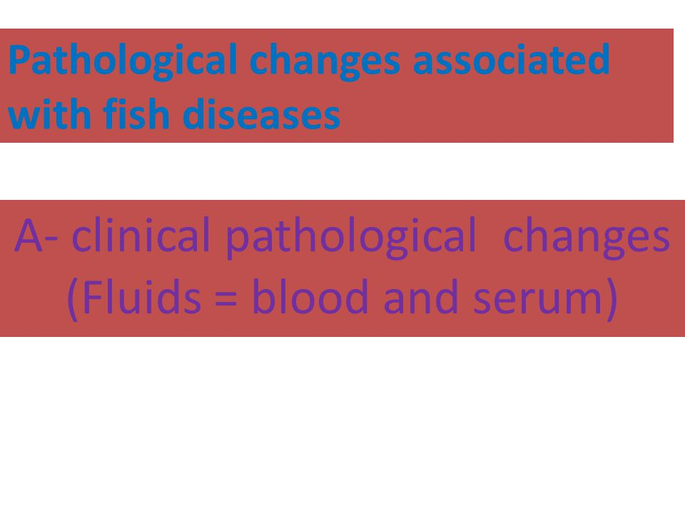 Pathological changes associated with fish diseases