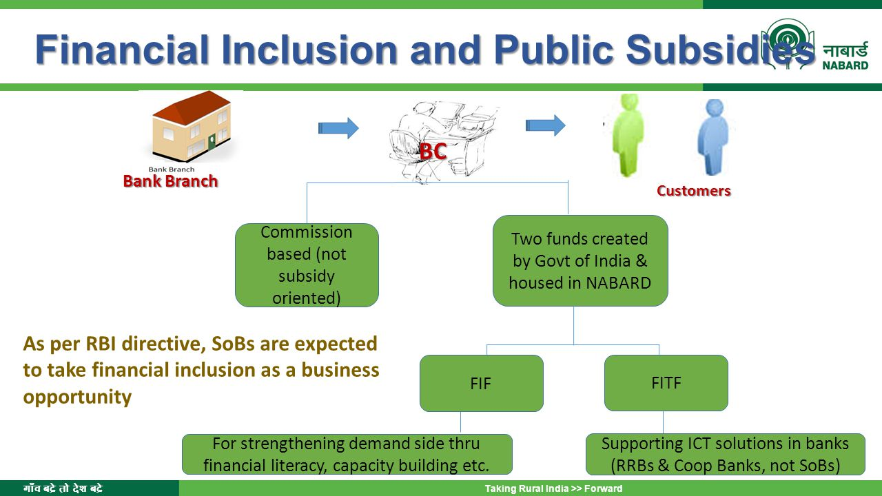 Financial Inclusion and Public Subsidies