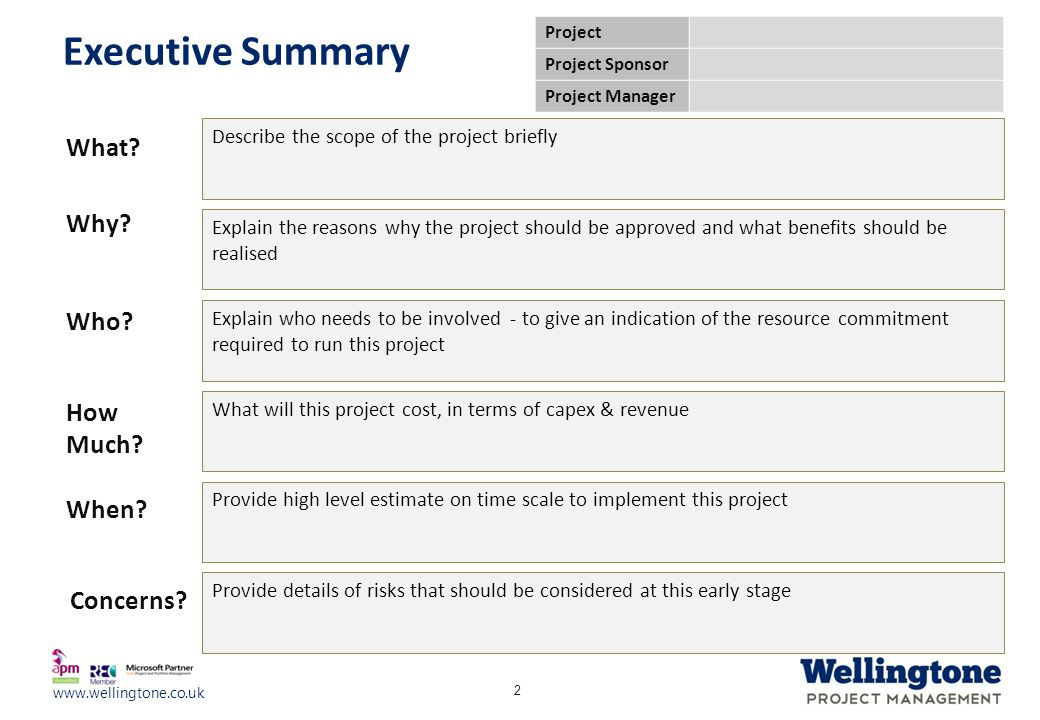 Executive Summary What Why Who How Much When Concerns