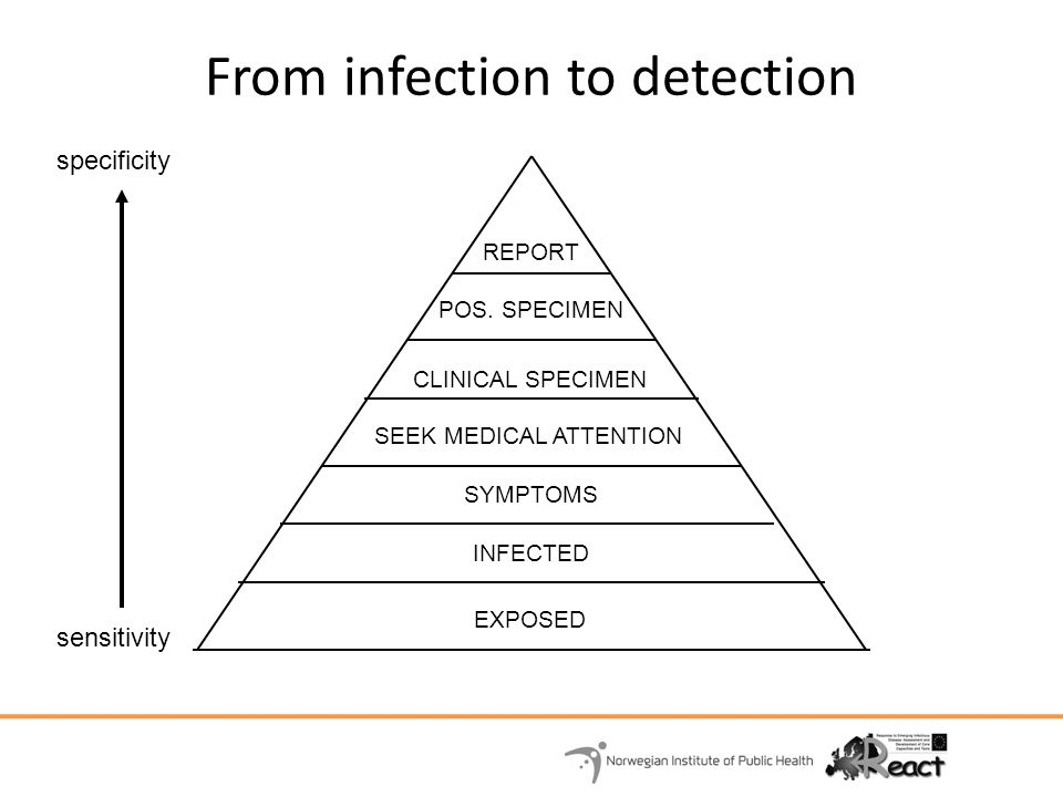 From infection to detection