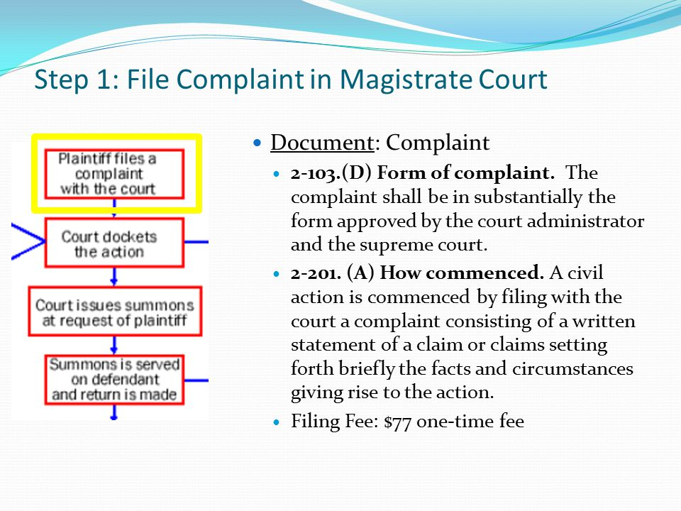 Step 1: File Complaint in Magistrate Court