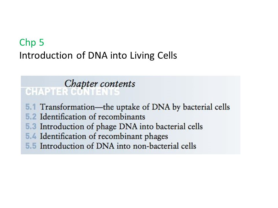 Chp 5 Introduction of DNA into Living Cells