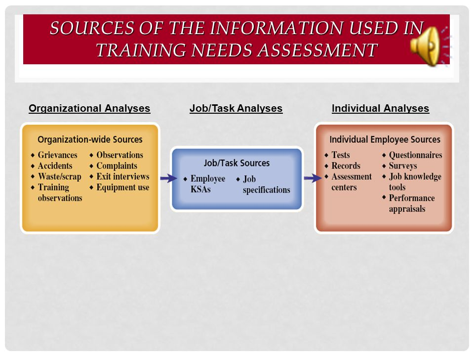 Sources of the Information Used in Training Needs Assessment