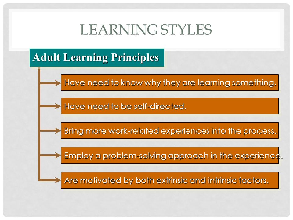 Learning Styles Adult Learning Principles