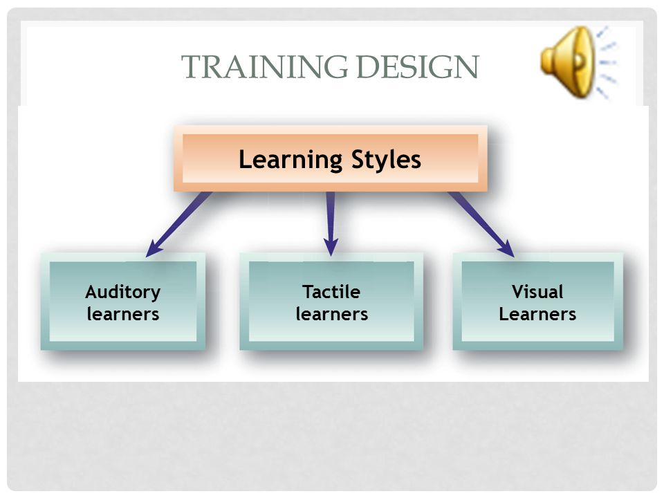 Training Design Learning Styles Auditory learners Tactile learners