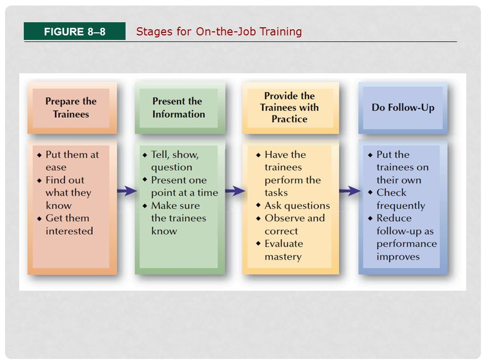 FIGURE 8–8 Stages for On-the-Job Training