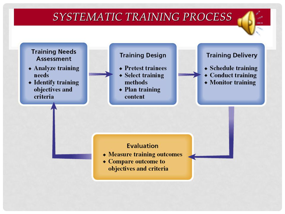 Systematic Training Process
